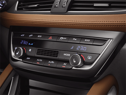 Hi-Fi audio system and Dual-zone automatic climate control of Borgward BX7
